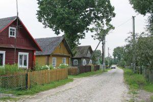 Kaimo vietovių strategijoms įgyvendinti – 110,3 mln. eurų