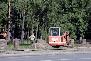 Poilsio parke kertami medžiai