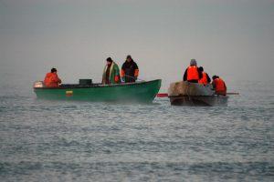 Nelaimė Baltijos jūroje: kas kaltas?