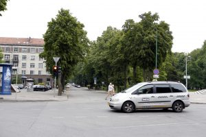 Dalyje Danės gatvės neliks medžių