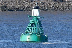 Didžiojoje Britanijoje – nerimas: Temzės upėje pastebėtas neįprastas reiškinys