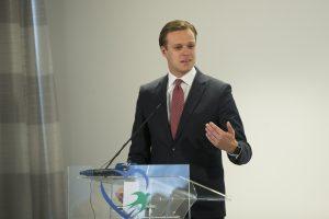 G. Landsbergis: siūlome stabdyti mokesčių pertvarką