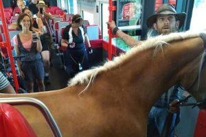Į traukinį – su arkliu