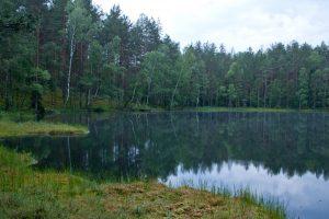 Seimas spręs, ar bešeimininkius vandens telkinius leisti perimti valstybei