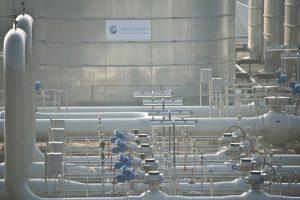 """""""Gazprom"""" čiuptuvai sėkmingai raizgo Europą: likęs saugiklis – figos lapelis?"""