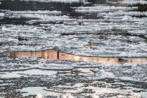 Tvenkinyje Mažeikių rajone nuskendo jaunas vyras