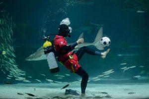 Laukdami čempionato, futbolo fanai su kamuoliu neria net po vandeniu