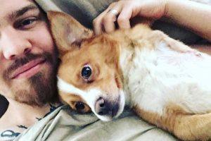 Trikojį šunelį priglaudęs R. Kalinkinas: padėti reikia tiems, kuriems reikia