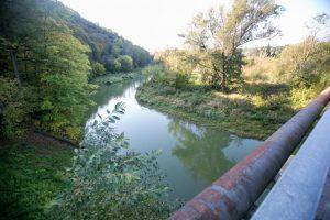 Aliarmas: kodėl atvėsus orams sužaliavo Jiesios upė?