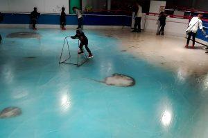 Prieštaringa reklama Japonijoje: čiuožykla įšaldė 5 tūkst. žuvų