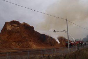 Nuo Radviliškyje kilusio gaisro dūmų sunegalavo du žmonės