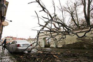 Ugniagesiai perspėja: savaitgalį šalyje siautės galingas vėjas