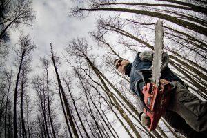 Privačių miškų savininkams – priminimas susimokėti