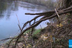 Nevėžis grasina ekologine bomba