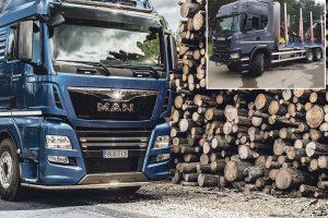 Medienos perdirbėjai investuoja į logistiką