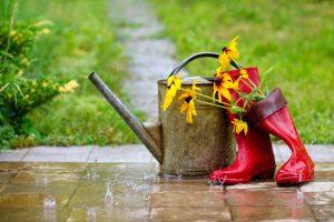 Kitos savaitės orai: vis labiau jausis ruduo