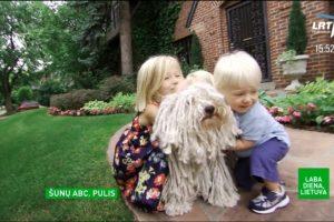 Ar matėte vieną keisčiausių šunų pasaulyje?