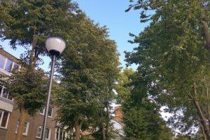 Uostamiesčio kiemuose – daugiau šviestuvų