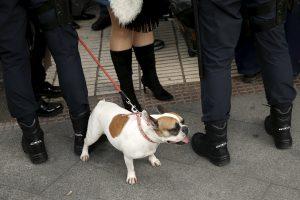 Madrido gyventojams gali tekti padirbėti gatvių valytojais