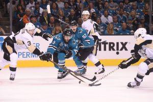 D. Zubrui nepavyko iškovoti NHL Stenlio taurės