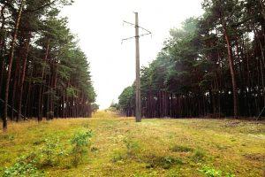 Kuršių nerijos Rusijos dalis atjungta nuo Lietuvos energetikos sistemos