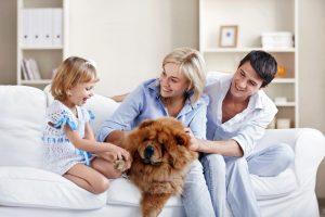 Šeimoms – išskirtinės paskaitos
