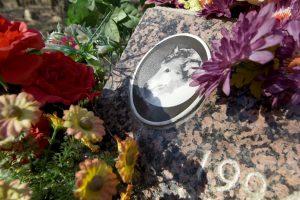 Panevėžyje planuojamos naminių gyvūnų kapinės