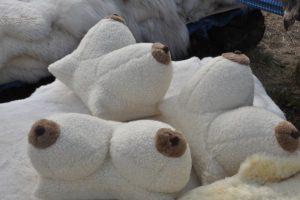 Norite porcelianinės pagalvės?