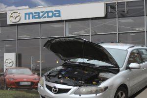 Nusivylęs vairuotojas: autoserviso meistrai siūlė spėjimo būdu rinktis, ką remontuoti