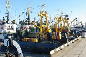 Žvejyba sausį Baltijoje neprasidėjo