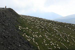 Rumunijos kalnuose išgelbėta 11 turistų