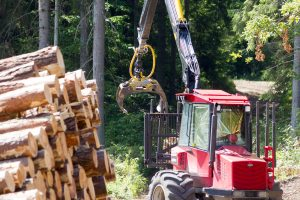 Ministras atmeta kaltinimus dėl prekybos mediena monopolizavimo