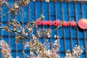 """""""Swedbank"""" pernai uždirbo 101 mln. eurų grynojo pelno"""