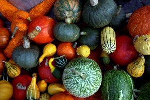 Kaip išsaugoti derlių žiemai?