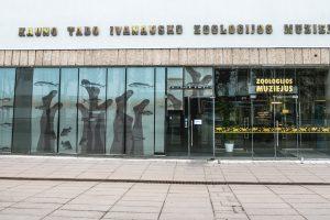 Akmenų muziejus bus prijungtas prie T. Ivanausko muziejaus?