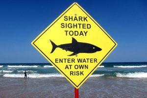 Australijoje ryklys sužeidė banglentininką