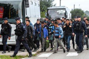 Prancūzų policija iš stovyklos evakuoja 500 migrantų