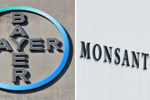 "Oficialu: ""Bayer"" už 66 mlrd. dolerių perka ""Monsanto"""