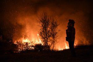 Portugalijoje per miškų gaisrus žuvusių žmonių skaičius padidėjo iki 43