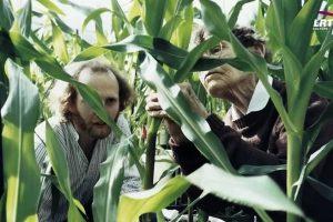 """""""Moterys moksle"""": kas sieja kukurūzus ir genetinius tyrimus?"""