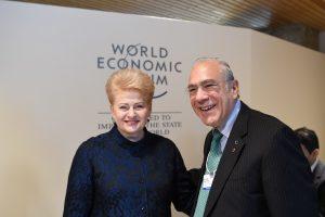 D. Grybauskaitė: Lietuva šiemet turėtų būti pakviesta į EBPO