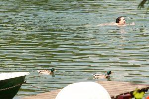 Kokiose šalies maudyklose vandens kokybė neatitinka normų?