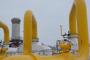 Tauragės taryba skyrė lėšų dujų trasai iki privačios pieninės