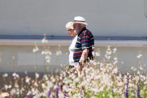 Pensijų fondų atstovai: reforma nuo kitų metų neveiks