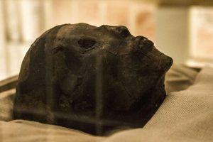 Rygos savivaldybės bute rasti mumija virtę palaikai