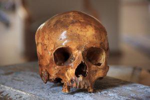Ką mokslininkai sužino tyrinėdami seniai mirusių žmonių kaulus?