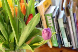 Ką skaityti pavasarį? (knygų apžvalgos)