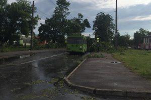 Kaune škvalas smogė Panemunei ir Vilijampolei, Palemone dingo elektra