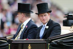 Britų princas Harry baigė savo karinę tarnybą