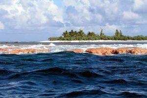 Vandenyne besiplečiantį šiukšlyną sutvarkytų nebent naujos kartos žmonės